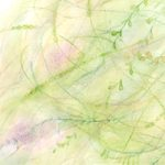 seaweed illustration 04 detail by Penina S Finger